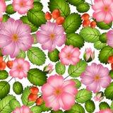 桃红色花,叶子和野玫瑰果莓果的明亮的无缝的样式,在白色背景,传染媒介 库存例证
