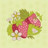 桃红色草莓 库存照片