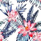 桃红色莲花和蓝色棕榈叶无缝的背景 向量例证