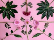 桃红色表面上的花花束 库存照片