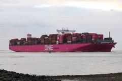 桃红色货船一天鸽座驾驶往安特卫普 库存照片