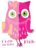 桃红色逗人喜爱的动画片猫头鹰 库存照片