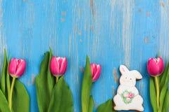 桃红色郁金香和兔宝宝曲奇饼在蓝色背景 库存照片