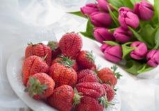 桃红色郁金香和草莓花束  一件礼物3月8日 免版税库存图片