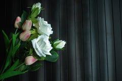桃红色郁金香和阴影 图库摄影