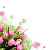 桃红色郁金香开花花束和油漆下落 免版税库存图片