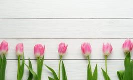 桃红色郁金香的样式 免版税库存照片