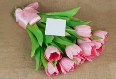 桃红色郁金香花束与丝带和一点明信片的 免版税库存图片