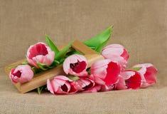 桃红色郁金香花束与丝带和木制框架的 库存照片