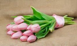 桃红色郁金香花束与桃红色缎丝带的 库存图片