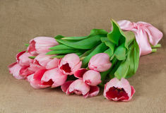 桃红色郁金香花束与桃红色缎丝带的 库存照片