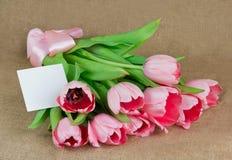 桃红色郁金香花束与缎丝带和明信片的 免版税图库摄影