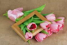 桃红色郁金香花束与缎丝带和木制框架的 免版税库存照片
