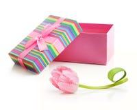 桃红色郁金香花束和当前箱子 库存照片