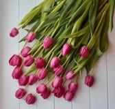 桃红色郁金香花束在白色木背景的 库存照片
