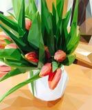 桃红色郁金香花瓶白色 皇族释放例证
