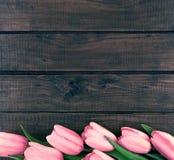 桃红色郁金香行在黑暗的土气木背景的 春天流程 免版税库存图片