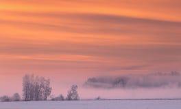 桃红色雾在冬天早晨 免版税图库摄影