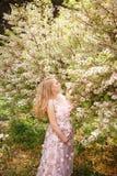 桃红色鞋带礼服感人的腹部和嗅到花的美丽的孕妇在树 库存图片