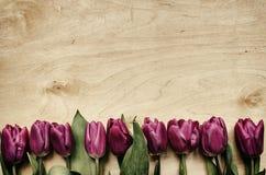 桃红色,在轻的胶合板背景的郁金香束 库存照片