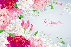 桃红色,红色和白色夏天开花背景 向量例证