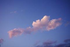 桃红色,蒂瓦特,黑山精美树荫  库存图片
