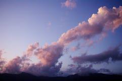 桃红色,蒂瓦特,黑山精美树荫  免版税库存照片