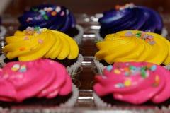 桃红色,黄色和紫色杯形蛋糕 库存照片
