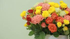 桃红色,黄色,红色和橙色玫瑰,特写镜头水多,五颜六色的花束  股票视频