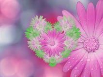 桃红色绿的花,在桃红色蓝色被弄脏的背景 特写镜头 明亮的花卉构成,卡片为假日 flo拼贴画  库存图片