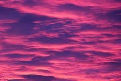 桃红色Cloudscape 免版税库存图片