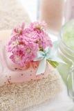 桃红色kalanchoe blossfeldiana美丽的微小的花束开花 免版税图库摄影