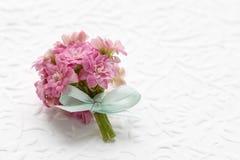 桃红色kalanchoe blossfeldiana美丽的微小的花束开花a 库存图片