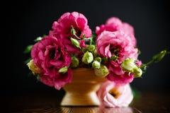 桃红色lisianthus花美丽的花束  库存图片