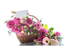 桃红色lisianthus花美丽的花束  免版税库存照片