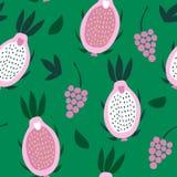 桃红色pitaya和葡萄的无缝的样式在绿色背景 向量例证