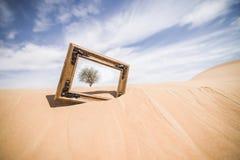 画框在沙漠 免版税库存照片