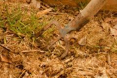 框天然肥料 库存照片