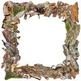 框架万圣节照片安排您文本的向量 免版税库存照片