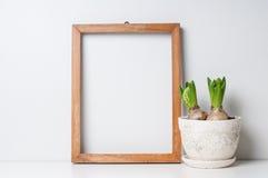 框架和植物 免版税库存图片