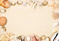 框架沙子壳 免版税图库摄影
