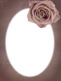框架玫瑰色葡萄酒 免版税库存图片