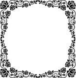 框架玫瑰 免版税图库摄影