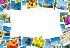 框架由各种各样的自然照片制成 免版税库存图片