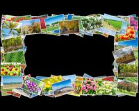 框架由各种各样的自然照片制成 库存图片