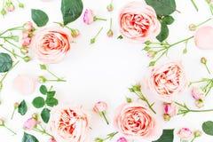 框架由桃红色玫瑰和芽制成在白色背景 平的位置,顶视图 免版税库存照片