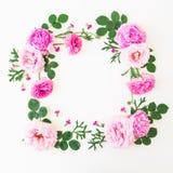 框架由桃红色花制成-玫瑰和牡丹与叶子在白色背景 所有所有构成要素花卉例证各自的对象称范围纹理导航 平的位置,顶视图 免版税库存照片