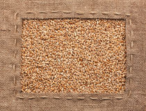 框架由粗麻布制成用麦子 免版税库存图片
