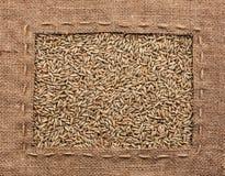 框架由粗麻布制成用黑麦 免版税图库摄影