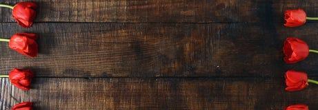 框架由红色郁金香做成在黑暗的木背景 免版税库存图片